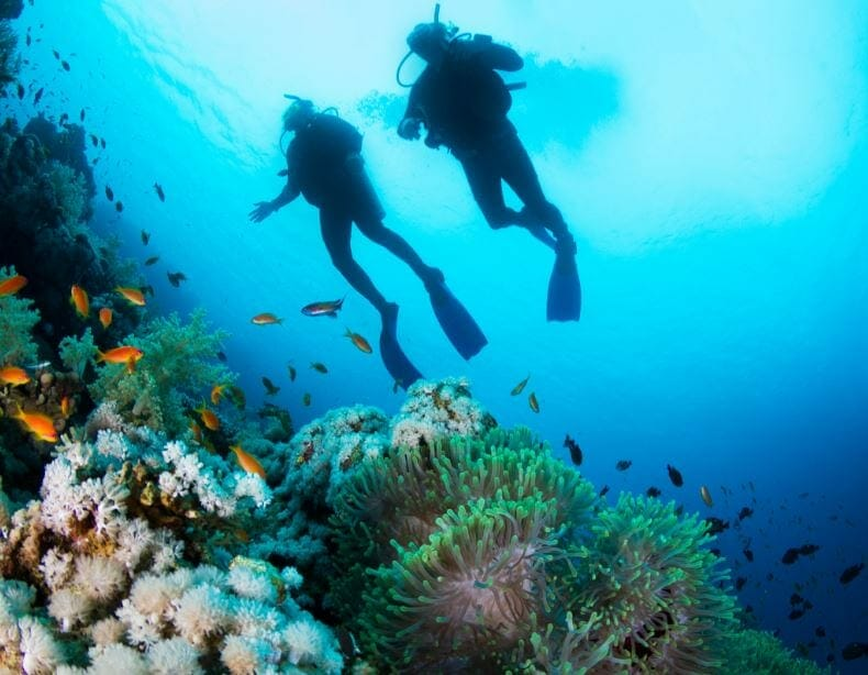 Commercial Diving Accident Lawyer in Louisiana
